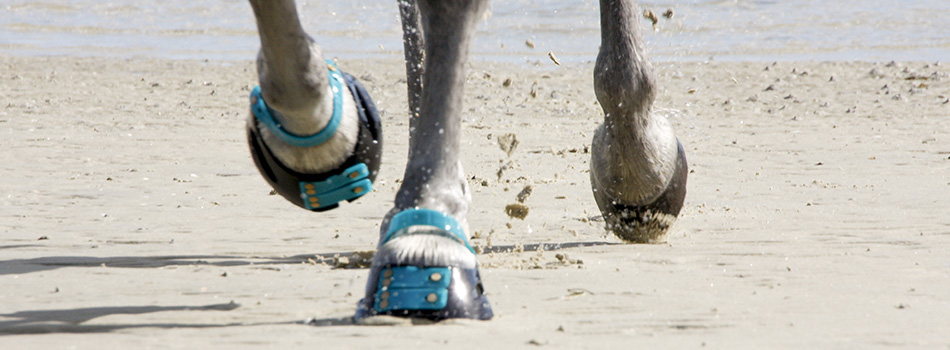 Botas para caballos  Scoot Boots